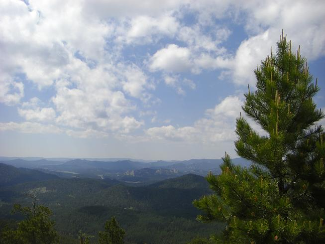view in the Black Hills