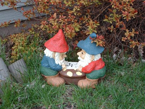 Kirsten & Shawn's gnomes
